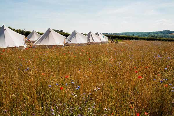 Tipi Village overlooking the stunning Cotswold Field of Dreams